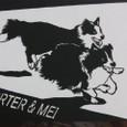 PORTER&MEI